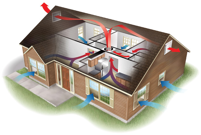 attic cealing ideas - Guardian Home Insulation